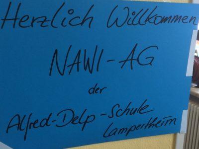 Forschertag 2015 – Alfred-Delp-Schule, Lampertheim